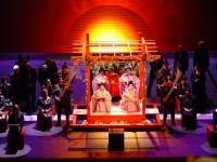 De geisha 2.jpg